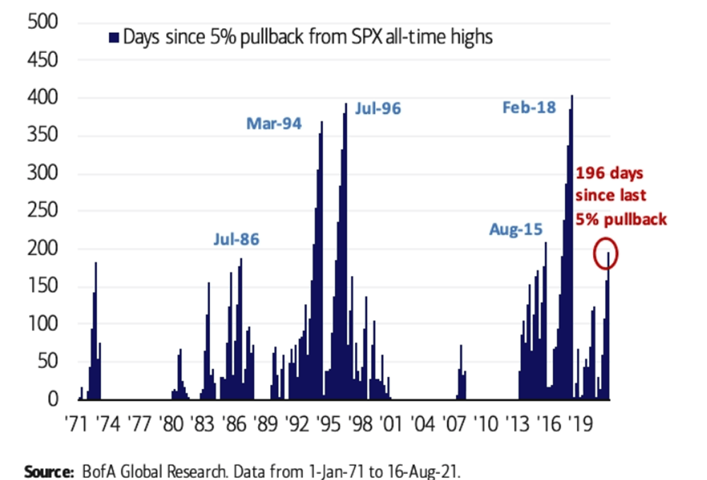 graph shows August 2021 is 196 days since last 5% pullback